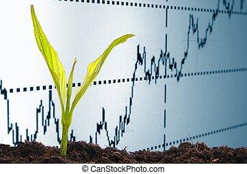 crescendo, economia