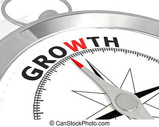 crescimento, palavra, metálico, compasso