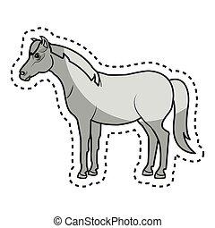 cultive campo, cavalo, animal