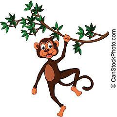 cute, árvore, macaco