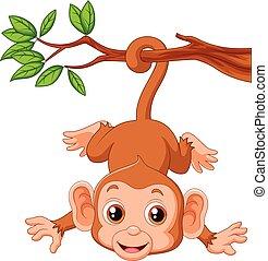 cute, hangin, árvore, macaco