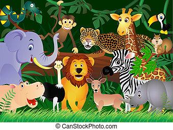 cute, selva, animal, caricatura