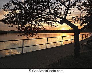 dc., pôr do sol, washington