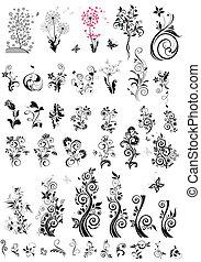 decorativo, elementos florais, desenho, (