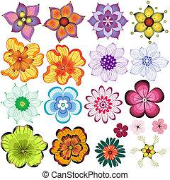 decorativo, flores, cobrança