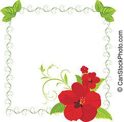 decorativo, quadro, flores, vermelho