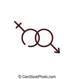 desenho, macho, femininas, isolado, vetorial, símbolos