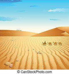deserto, camelo
