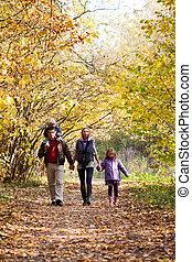 desfrutando, parque, família, passeio