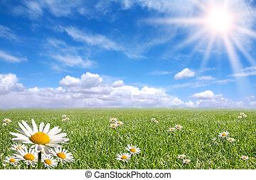 dia, exterior, luminoso, feliz, primavera