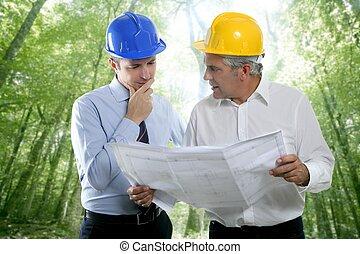 dois, plano arquiteto, equipe, perícia, engenheiro, floresta