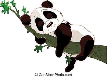dormir, panda, ramo