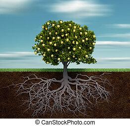 dourado, árvore, maçã