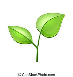 ecologia, conceito, folhas, vetorial, verde, lustroso, ícone
