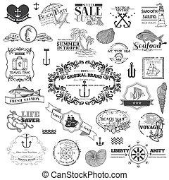 elementos, -, calligraphic, vetorial, desenho, mar, náutico, scrapbook