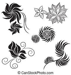 elementos, pretas, projeto fixo, flor