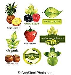 em, ecológico, jogo, vetorial, frutas