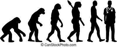 enfermeira, macho, evolução