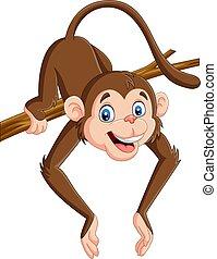 engraçado, árvore, macaco, ramo, caricatura