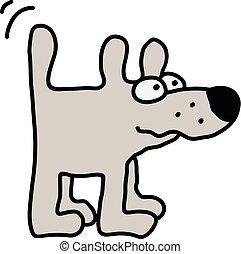 engraçado, cachorro branco