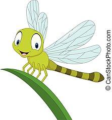 engraçado, folha, caricatura, libélula