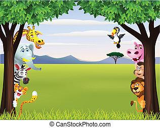 engraçado, safari, animal, caricatura