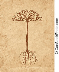 esboço, grunge, árvore, papel, antigas, raizes