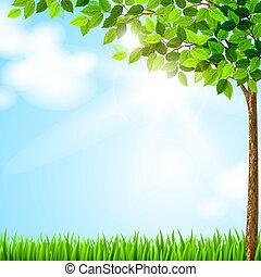 estação, árvore