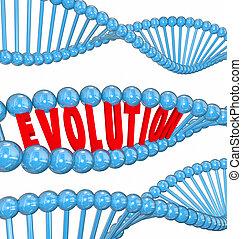evolução, antepassados, adn, família, palavra, genes, letras, costa