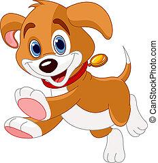 executando, engraçado, filhote cachorro