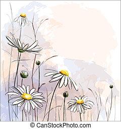 experiência., flor, romanticos, margaridas