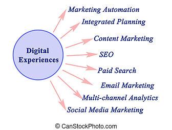 experiências, tipos, digital