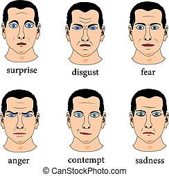 expressão, facial