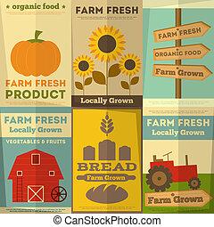 fazenda, alimento, jogo, orgânica, cartazes