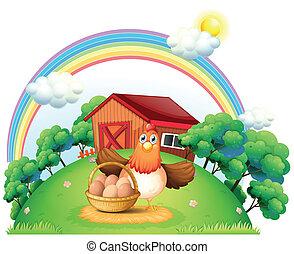 fazenda, cesta, galinha, ovo