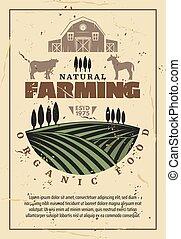 fazenda, orgânica, agricultura, retro, cartaz