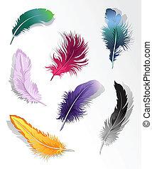 feather%u2019s, jogo, multicolored