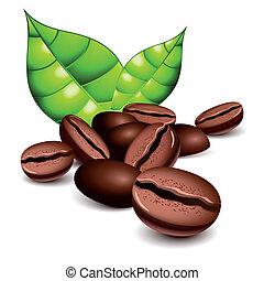 feijões café, folhas