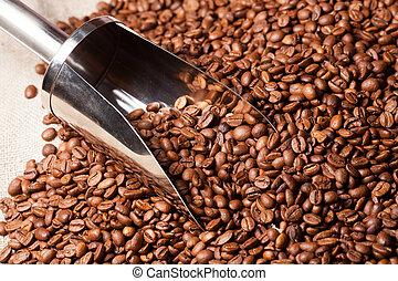 feijões café, saco burlap