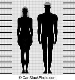 femininas, macho, modelos, corporal