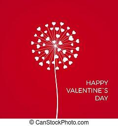 feriado, valentine, love., fevereiro, experiência., hearts., romanticos, vermelho, dandelions, 14, branca, vetorial