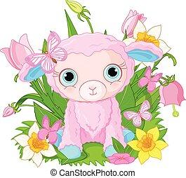 filhote, sheep, cute