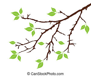 filial árvore