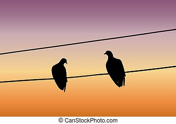 fio, sentando, pombos, céu, dois, contra, silhuetas, pôr do sol