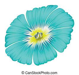 flor azul, florescer