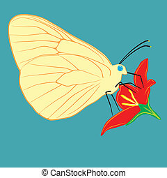 flor, borboleta
