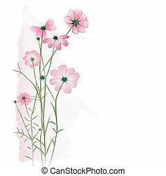 flor branca, fundo, springtime, coloridos
