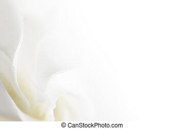 flor branca, macio, fundo
