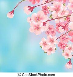 flor, cereja, abstratos