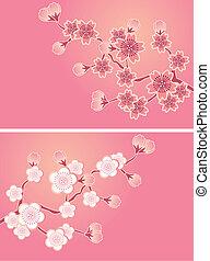flor, cereja, jogo, cartões